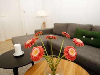 Large spacious Copenhagen apartment near Forum metro