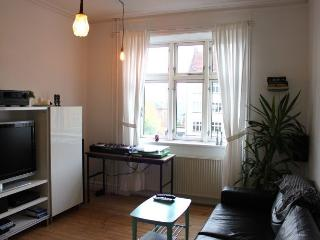 Nice Copenhagen apartment near Valby city center, Copenhague