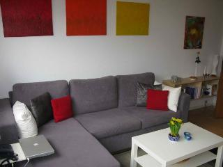 Nice Copenhagen apartment near Frederiksberg Gardens