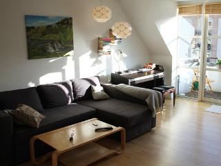 Nice Copenhagen apartment at Vesterbro district, Copenhague