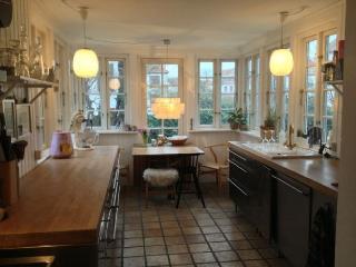 Wonderful Copenhagen villa near Danshoej station