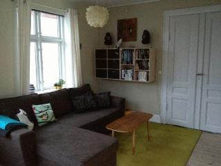 Bright child-friendly Copenhagen apartment at Noerrebro