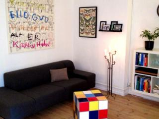 Cozy Copenhagen apartment close to Oesterport station
