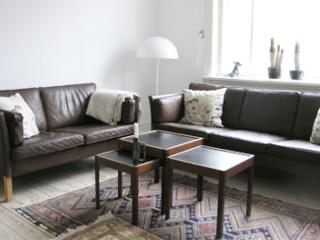 Copenhagen apartment at charming Oesterbro
