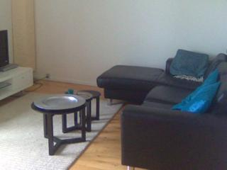 Lovely Copenhagen apartment near Amagerbro metro