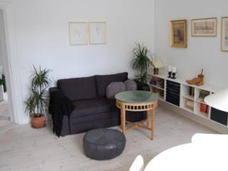 Renovated Copenhagen apartment near Central Station