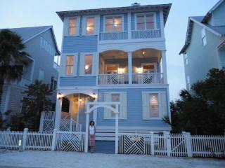 Fabulous Beach Cottage with Ocean Views, St. Simons Island