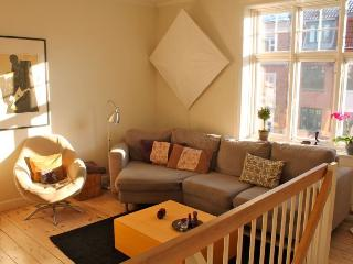 Lovely Copenhagen apartment near Triangle Square