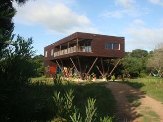 100% Pure Uruguay loft