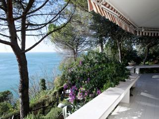 Ginestre - 3355 - Trieste, Pasturago