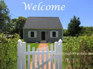 PATTP - Adorable Pristine Cape, Close to Town Center and Ink Well Beach. Landscaped Yard, AC, Wi-Fi, Oak Bluffs