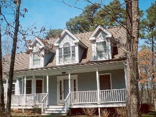 NICHJ - Tashmoo Cove, Walk to Association Beach, Tennis and Pool, Central Air, WiFi, Vineyard Haven