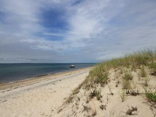 NETNA - Shared private beach adjacent to Mink Meadows Golf Course, Wifi