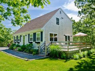 BLANB - Beachy Keen House at Long Point, A/C, Designer Interior, Large Deck, Lovely Yard, 3 TV's, WiFi, West Tisbury