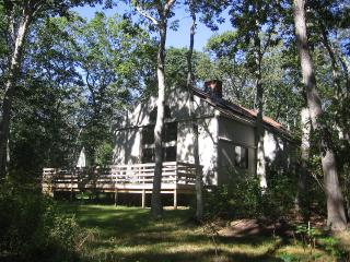 KOGAB - Chilmark, South Road, 3 Miles to Lucy Vincent Beach, WiFi