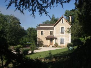 VILLA PAGE/4 BEDRMS/ON DORDOGNE RIVER/NEAR SARLAT