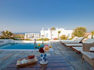 Skiron Villa, sea view, private pool &jacuzzi