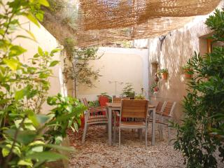 A quiet location in Felines-Minervois, open on the mountain