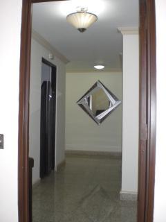 Condo Entry and  Associated Wall Docor