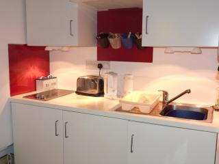 The modern kitchen, with integrated hob and fridge