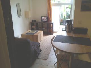 studio et terrasse La Rochelle centre parcs plage