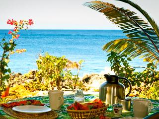 Beautiful & Updated Seafront Cottage-15% OFF!, Negril
