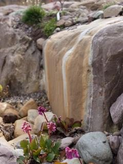 Listen to the tranquil sounds of water cascading over boulders and rocks