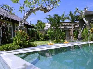 Fabulous Villa Maya, 2bd,rice field, Canggu