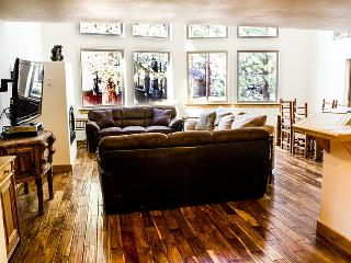 Huge Living Area, great for entertaining. Three large couches, LED TV, Fireplace, open design