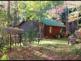 Private cabin, lake access, kayaks, canoes, Pets, Bryson City