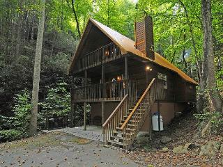 2 Bedroom Secluded, in Gatlinburg & National Park, Hot Tub, Wi-Fi