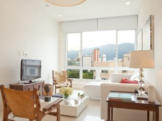 Bright 2 Bedroom Apartment in Ipanema, Río de Janeiro