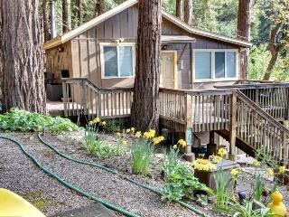 Secluded, dog-friendly mountain cabin w/jungle gym, deck, outdoor firepit & more, Felton