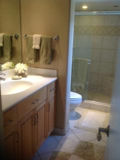 Guest bathroom w/ walk in shower