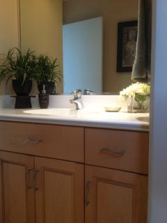 Guest Bathroom counter