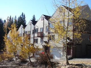 Sweet townhouse on the BIG, Whitefish