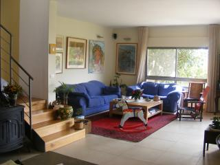 Beautiful house, magical garden, rural area, Givat Ada