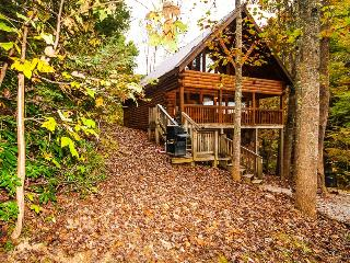 Honey Bear...2BR 2BA Smoky Mtn. Cabin, Sevierville