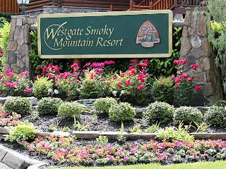 Westgate Smoky Mountain Studio Condo Water Park, Gatlinburg
