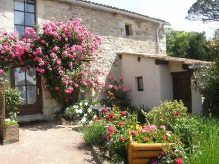 A Romantic cottage for TWO set amoungst vineyards., Les Verchers-sur-Layon