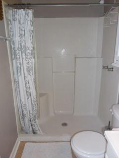 Roomy standing shower - no tub.