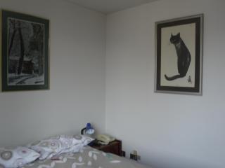 View from the bedroom door.