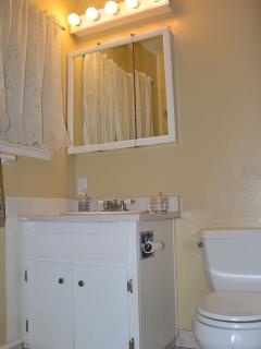 Master Bathroom - has large shower