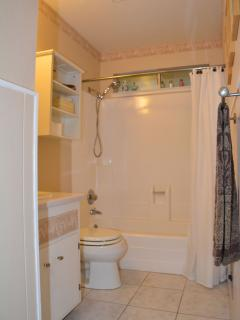 Front Bath - shower/tub combo
