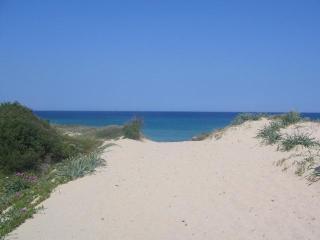 HOLIDAY HOME SARDINIA VILLAS ON THE BEACH