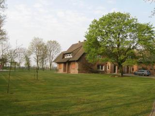 Vacation Apartment in Spahnharrenstaette - 1399 sqft, comfortable, bright, modern (# 5112), Werlte