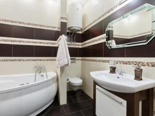 Comfortable 1 bedroom apartment in Kiev - 564