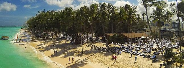 Arial view of the beach