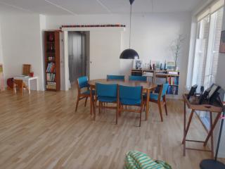 Very bright Copenhagen apartment at Islands Brygge, Kopenhagen