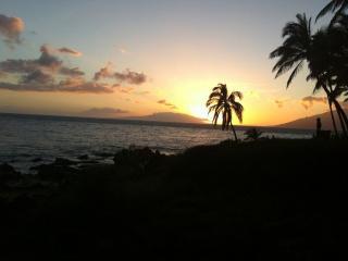 Maui Vista #1219 -Steps to the Best Beach on Maui!